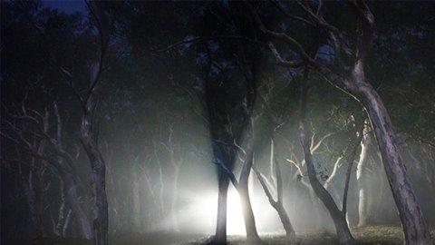 L'alieno del bosco di Sturno